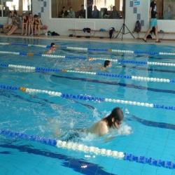 2015-mistrzostwa-gniezna-szkol-podstawowych-i-gimnazjow-w-plywaniu