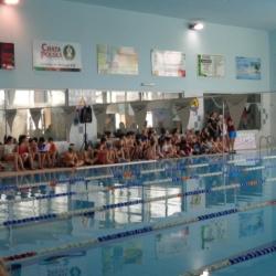 2017-mistrzostwa-gniezna-szkol-podstawowych-i-gimanzjow-w-plywaniu